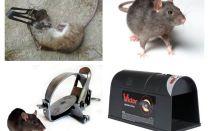 Trappole per ratti