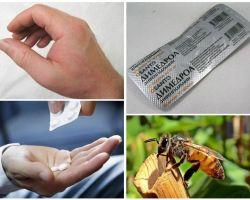 Cosa fare se un ape morde