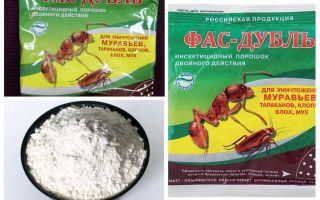 Significa Fas degli scarafaggi: compresse, gel e polvere