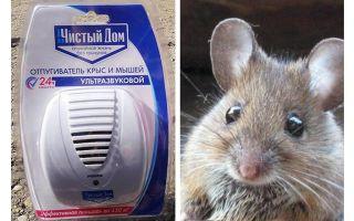 Repeller ultrasonico da ratti e topi Clean house