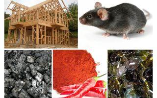 Protezione della casa del telaio contro i topi