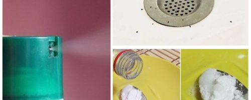 Come sbarazzarsi dei moscerini nell'appartamento