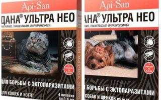 Dana Ultra Neo gocce da pulci per cani e gatti