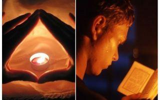 Piazzole e preghiere da cimici nell'appartamento