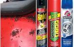 Come ottenere le formiche dalla macchina