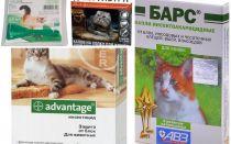 Gocce al garrese dalle pulci per gatti e gattini