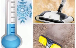 Come sbarazzarsi di insetticidi pulci tappeto e mezzi improvvisati
