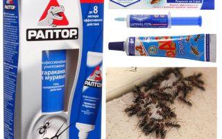 I migliori prodotti di formica