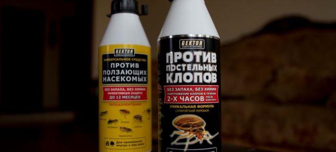 GEKTOR contro cimici e insetti striscianti