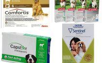 Come sbarazzarsi di pulci nei cani, il mezzo più efficace di pulci