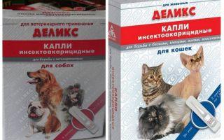Deliziose gocce di pulci per cani e gatti