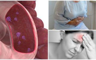 Come determinare la presenza di Giardia nel corpo umano
