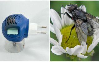 Fumigatori da mosche e zanzare nella presa
