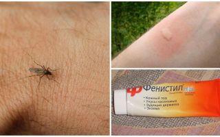 Come e come rimuovere il prurito dalle punture di zanzara in un bambino e un adulto