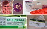 I migliori farmaci per il trattamento di Giardia negli adulti
