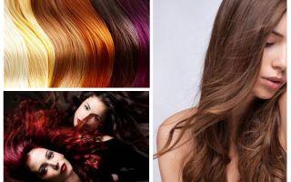 Possono esserci pidocchi sui capelli tinti