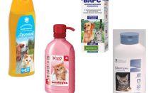 Revisione dei mezzi più efficaci di pulci per i gatti