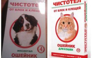 Collare celeland delle pulci per cani e gatti