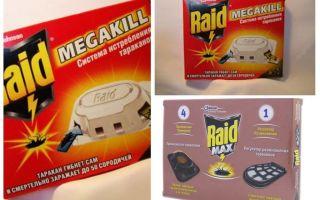 Scarafaggio Raid: trappole, spray, aerosol