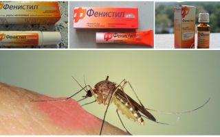 Gel Fenistil da punture di zanzara: istruzioni, recensioni e analoghi