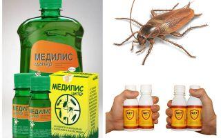 Come e cosa avvelenare gli scarafaggi a casa