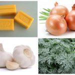 Sapone da bucato, cipolla, aglio e assenzio