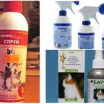 Spray per pulci nei gatti