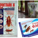 Polveri di scarafaggio