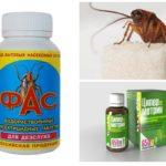Pillole di scarafaggio