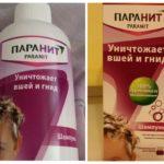 Shampoo Paranit