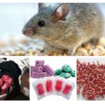 Forme di veleno per topi