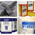 Metodi popolari dai ratti