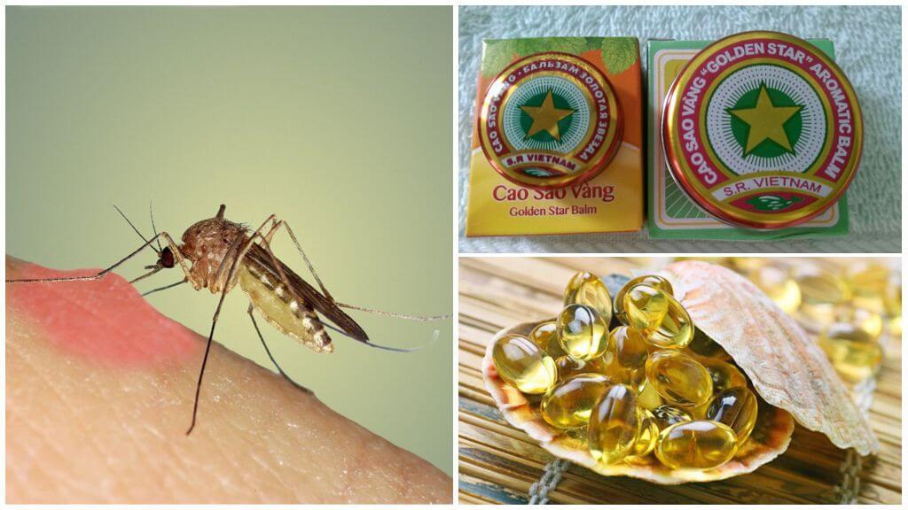 Metodi per trattare con le zanzare