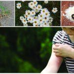 Repellente per zanzare per i bambini